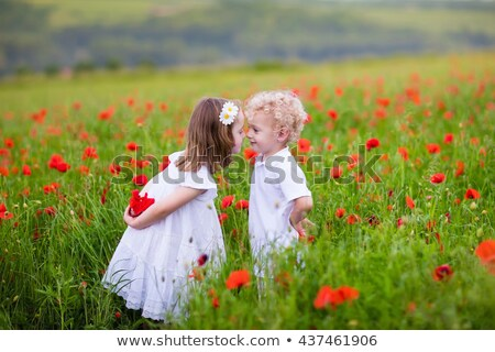 Stock photo: Little curly blond boy and girl play in poppy flower field. Child picking red poppies. Toddler kid i