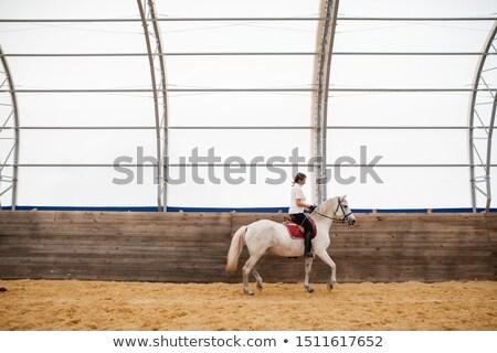 young female moving along wooden fence while sitting on back of white horse stock photo © pressmaster