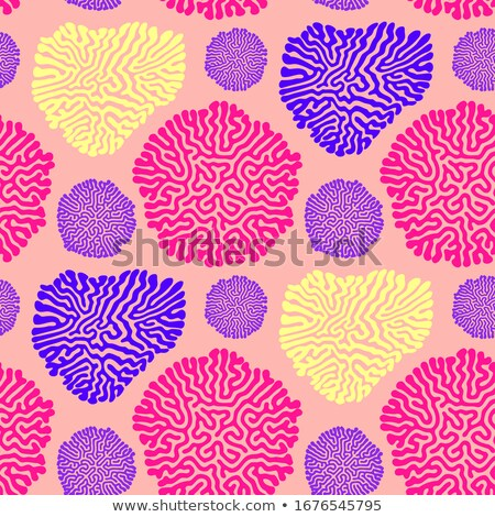 turing morphogenesis reaction diffusion pattern
