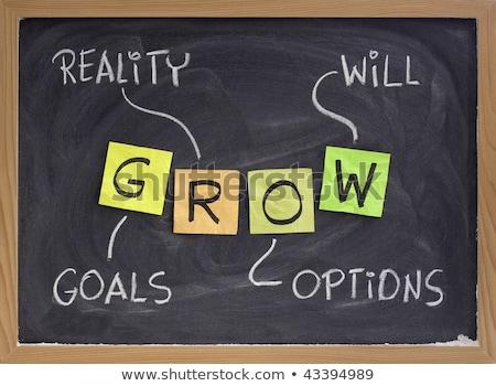 Crecer objetivos realidad opciones mano escrito Foto stock © ivelin