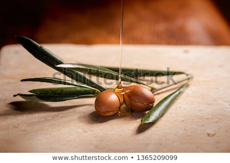 Plants and Nuts or Seeds, Hair Oils Ingredients Stock photo © robuart