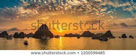 Zonsondergang Vietnam panorama zomer dag landschap Stockfoto © bloodua