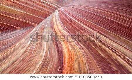 Pasiasty rock ocean niski fala Zdjęcia stock © craig