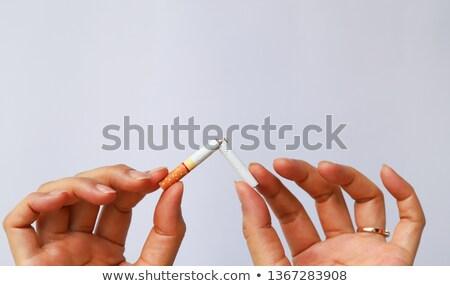 coupé · cigarette · blanche · santé · fumer · ciseaux - photo stock © beemanja
