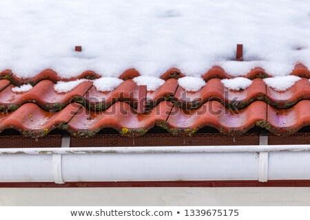 銅 · 屋根 · タイル · 高級 · 家 - ストックフォト © gewoldi