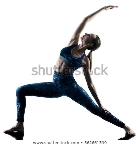 йога · портрет · красивая · женщина · осуществлять · сторона - Сток-фото © zastavkin