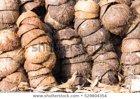 Pile of discarded coconut husks in Thailand 