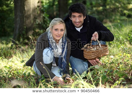Couple collecting mushrooms in the forest Stock photo © photography33