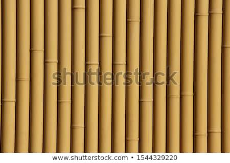 hek · textuur · sneeuw · structuur · bruin - stockfoto © smithore