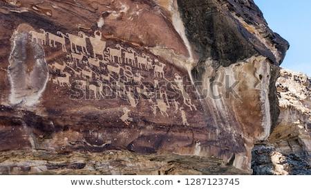 Nove canyon pannello Utah alto concentrazione Foto d'archivio © PixelsAway