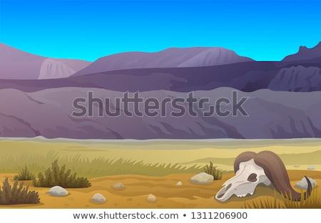 cow in a prairie stock photo © chrisroll