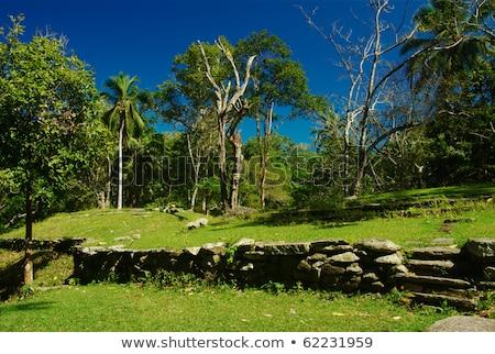 Ruins in Pueblito, Colombia Stock photo © ildi