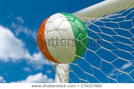 футбола цветы Берег Слоновой Кости вектора иллюстрация символический Сток-фото © perysty