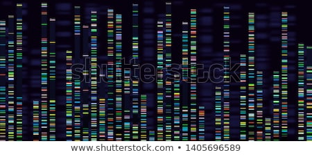 dna sequences stock photo © idesign