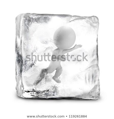 Foto stock: 3D · pequeño · personas · congelado · persona · hielo