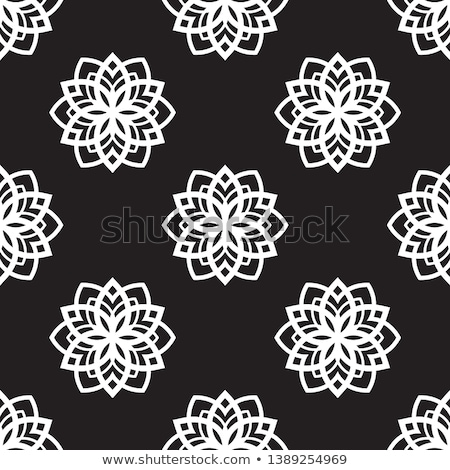 snow flake medallion 6 Stock photo © robertosch
