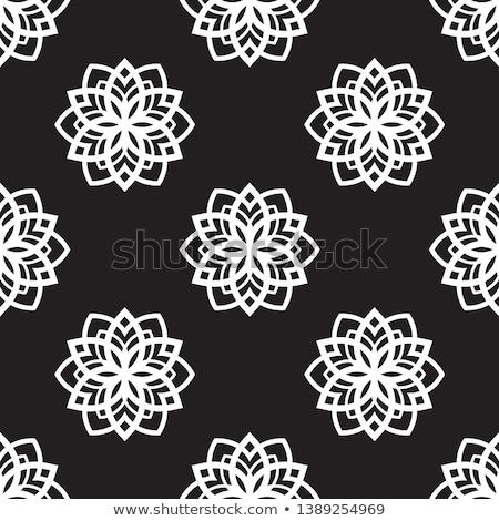snow flake medallion 6 Stock photo © robertosch