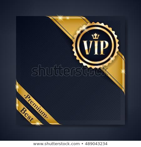 Знак vip золото цепь набор Сток-фото © SVitekD