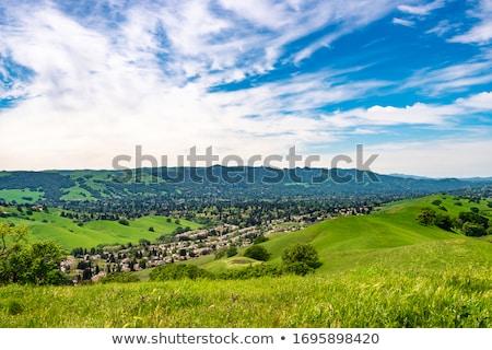 Széles látószögű kilátás fák völgy Kalifornia hegyek Stock fotó © swatchandsoda