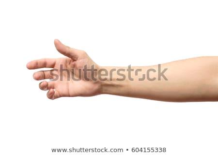 Foto stock: Masculino · mão · aperto · de · mão · isolado · branco