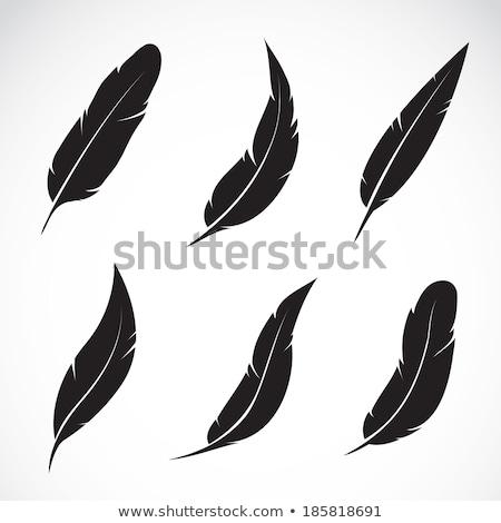 Ilustração caneta nosso grupo cartas escrita Foto stock © kolobsek