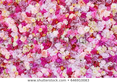 свадьба цветок подробность большой празднования женщину Сток-фото © jonnysek