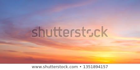 Majestueus avond boven groene veld hemel Stockfoto © chesterf