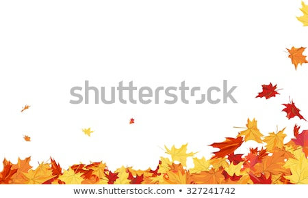 autumn illustration with fall leaves and rays Stock photo © marinini