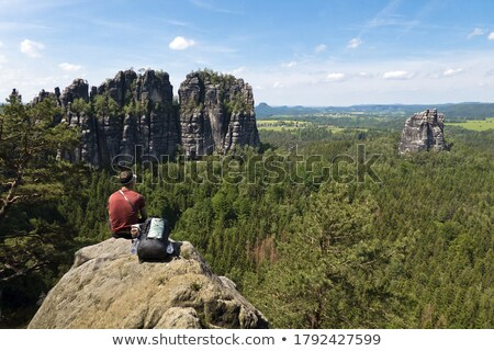 Stones in Saxon Switzerland Stock photo © w20er