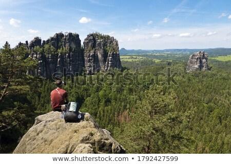 stones in saxon switzerland stock photo © w20er