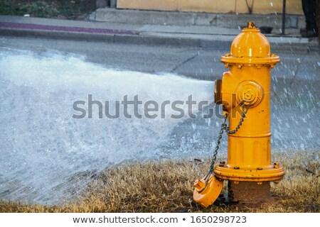 velho · água · vermelho · fogo · cidade · Lisboa - foto stock © meinzahn