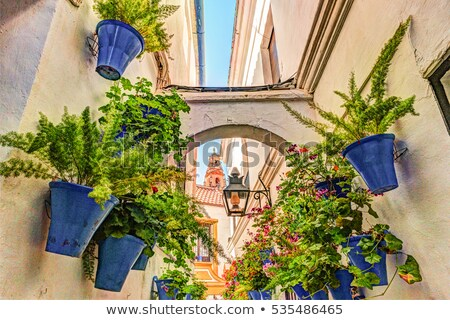 typical window decorated pink and white flowers cordoba spain stock photo © taiga