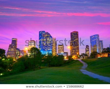 Houston gün batımı ufuk çizgisi Teksas park gökyüzü Stok fotoğraf © lunamarina