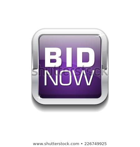 bod · nu · violet · vector · icon · ontwerp - stockfoto © rizwanali3d