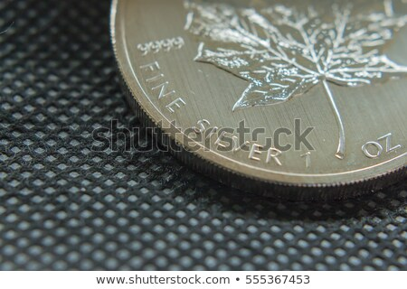 Silver bullion coin investment, Canadian maple leaf Stock photo © pixelman