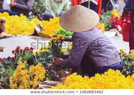 Flores de primavera Vietnam flor mercado hermosa orquídeas Foto stock © xuanhuongho