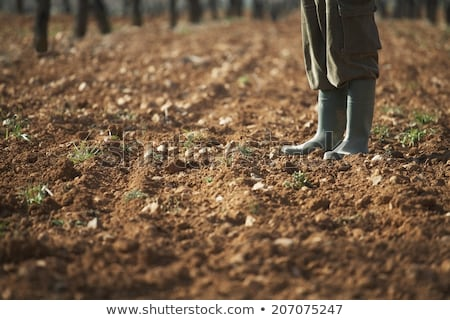Male Farmer Standing on Fertile Agricultural Farm Land Soil Stock photo © stevanovicigor