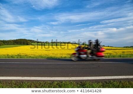мотоцикле Blossom области пару вождения природы Сток-фото © olandsfokus