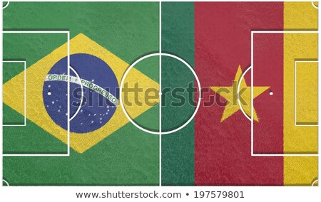 brazil cameroon stock photo © mhristov