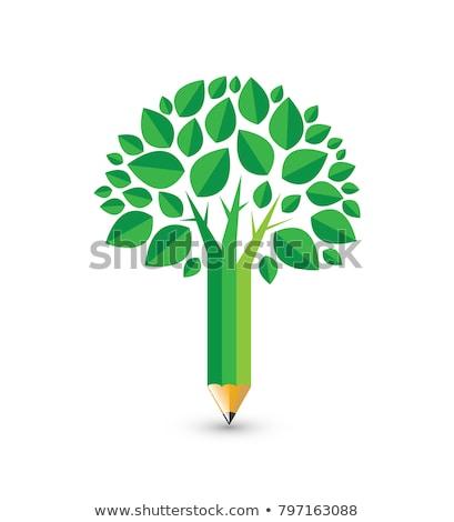 карандашом · зеленый · вектора · икона · дизайна · цифровой - Сток-фото © rizwanali3d