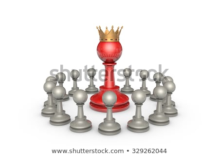 Parliamentary elections or the political elite (chess metaphor) Stock photo © grechka333
