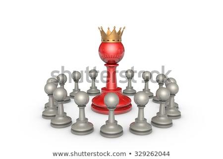 白 · チェス王 · 孤立した · 黒 · 電源 · 成功 - ストックフォト © grechka333