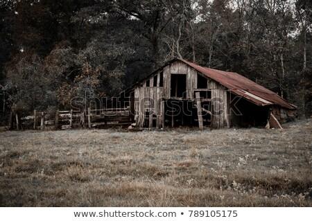 old abandoned barn color image stock photo © backyard-photography
