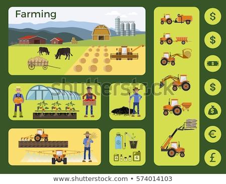 Greenhouse farming, cultivated landscape with arable soil Stock photo © stevanovicigor