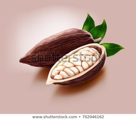 Maturo cioccolato cacao frutta principale ingrediente Foto d'archivio © Kacpura
