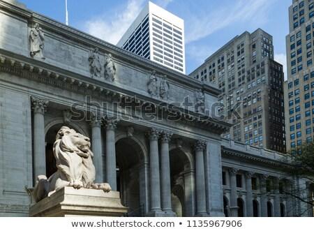 Сток-фото: ночь · Нью-Йорк · общественного · библиотека · парка · Manhattan