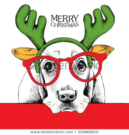 Kutyakölyök karácsony kártyák huncut kutya játszik Stock fotó © marimorena