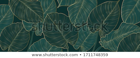 Stock photo: Tropical Seamless Pattern With Palm Monstera Leaves And Flowers