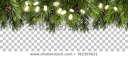 ünnepi ünnep dísz fenyőfa girland keret Stock fotó © ozgur