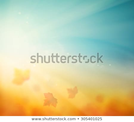 autumn sun with leaves on blue sky eps 10 stock photo © beholdereye